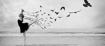 poemas_sobre_liberdade