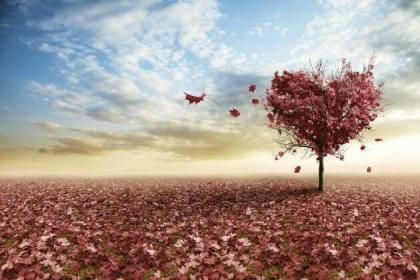 10-misterios-do-amor-explicados-pela-ciencia